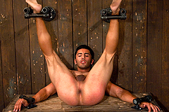 Gay BDSM Sex Porn Pictures Galleries