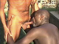Interracial gay sucking with two geezers